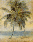 Palm Hammock I by Stiles