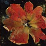Botany Fleur V by Georgie