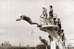 Old woman diving, Brighton 1960 by Mirrorpix