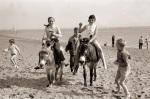 Donkey rides on beach, Exmouth 1962 by Mirrorpix