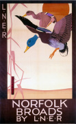 Norfolk Broads - Ducks