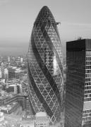 Gherkin (B&W) by Panorama London