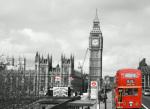 Westminster (B&W)