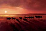 Zebu At Dusk by Jonathan Sanders
