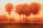 Auburn Shade by Darlou Gams