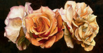 Rose Trio by Sarah Caswell