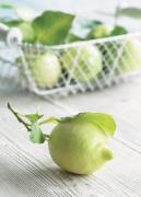 Lemons by Howard Shooter
