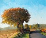 Autumn Sunlight by Frank Colclough