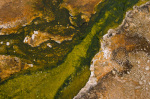 Black Sand Basin, Yellowstone National Park, Wyoming, USA by Sergio Pitamitz