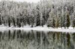Yellowstone River in winter, Yellowstone National Park, Wyoming, USA by Sergio Pitamitz