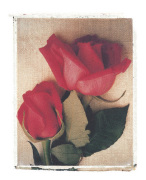 Two Red Roses by Deborah Schenck