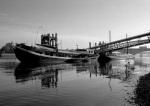 Putney houseboats, River Thames by Niki Gorick