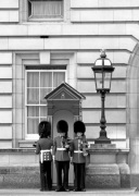 Guardsmen Buckingham Palace by Niki Gorick
