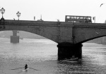Sculling up to Putney Bridge