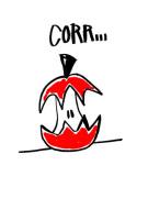 Corr by Stephen Anthony Davids