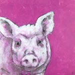 Pig on Pink