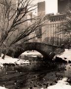 Central Park Bridges 4
