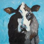 Cow #302