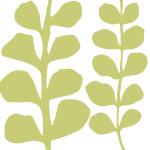 Green Fern on White by Denise Duplock
