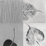 Leaf Quad by Anna Becker