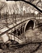 Central Park Bridges 3