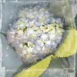 Antique Bloom by Erin Clark
