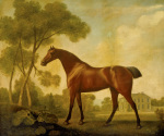 Ballerina a Bay Mare Belonging to the Earl of Clarendon