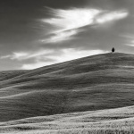 A Hill in Tuscany