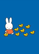 Miffy and Ducks