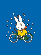 Miffy in the Rain