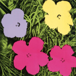 Flowers c.1964 (1 purple 1 yellow 2 pink)