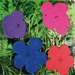 Flowers c.1964 (1 purple 1 blue 1 pink 1 red)