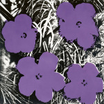 Flowers c.1964 (4 purple)