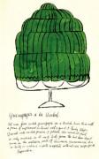 Wild Raspberries 1959 (green)