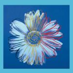 Daisy c.1982 (blue on blue)