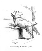 Sealyham Terrier 1932