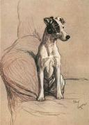 Fox Terrier 1928