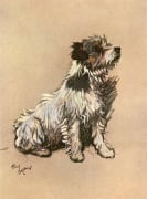 Little Dog Riley 1928