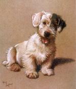 Sealyham Terrier 1928