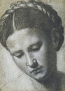 A woman's head with braided hair