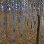 Beech Forest I, c.1902 by Gustav Klimt