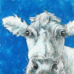 Cow on Blue 3