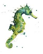 Seahorse Soliloquy