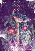 Pompeii Bird