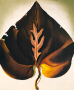 Dark and Lavender Leaf 1931
