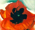 Red Poppy 1927