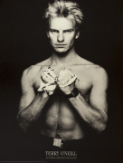 Sting (Gordon Sumner) 1984