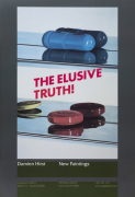 Elusive Truth Poster (Two Pills) (2005)