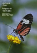 Forgotten Promises (Heliconius melpomene in Aster) (2011)