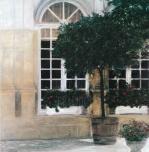 Plants against Two Windows by Piet Bekaert